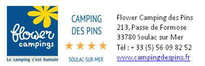 Logo flower camping des pins 2018